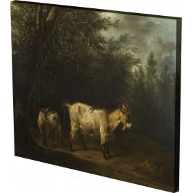 Adriaen van de Velde - A Goat