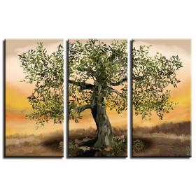 Καρνέζης - Ελαιόδενδρο 3