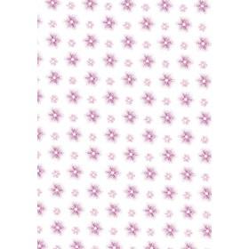 Λουλούδια - Απόχρωση Φούξια