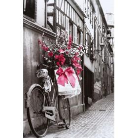 Ποδήλατο - Ροζ φιόγκος
